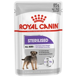 Royal-sterilized-dog